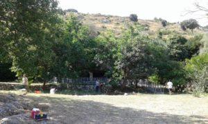 l'area del parco d'agnanointeressata dagli scavi archeologici